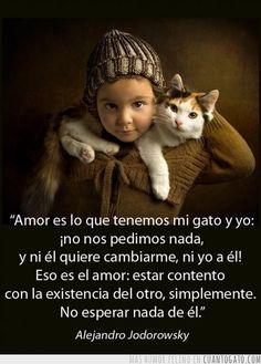 #lecciones de vida, amor