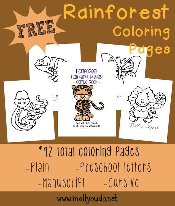 free rainforest coloring sheets 92 pages coloring sheets the o 39 jays and animals. Black Bedroom Furniture Sets. Home Design Ideas