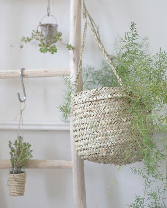 un coin de verdure chez soi , panier suspendu , green home, plantes intérieures, déco @emplettes #pourchezmoi