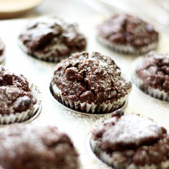 Chocolate Chocolate Chip Muffins - This muffin is rich, moist and easy to make.