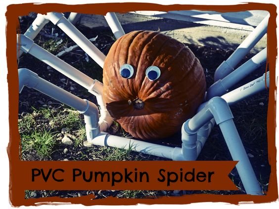 PVC Pumpkin Spider + Tutorial... wow... I thought of this myself yesterday... only I was going to paint my spider's legs black & glue the pumpkin to the legs.