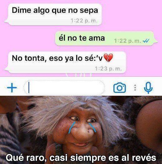 Odio El Amor Humor Memes Wattpad