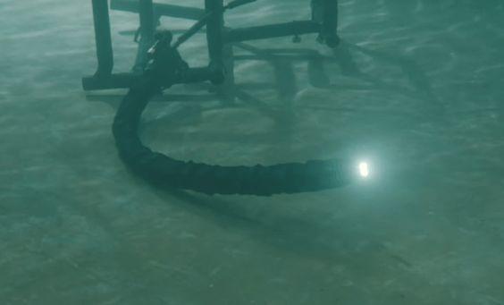 Estos aterradores robots acuáticos en forma de serpientes parecen sacados de Matrix