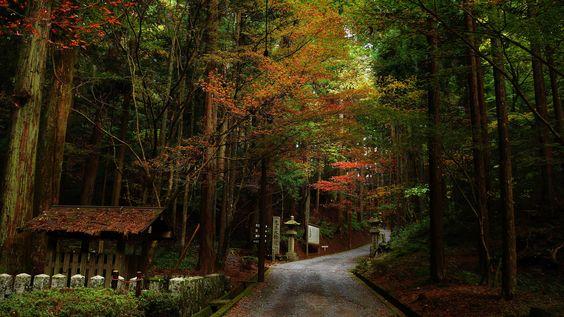 https://flic.kr/p/pXxczc | The UNESCO World Heritage Site -Hieizan Enryaku-ji Temple 比叡山延暦寺 横川 | Enryaku-ji (延暦寺 Enryaku-ji) is a…