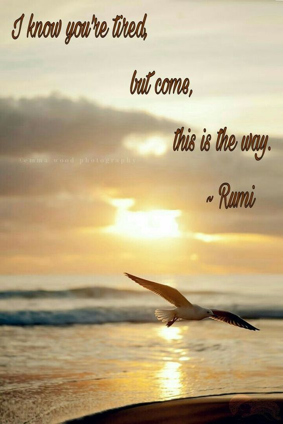 I know you're tired, but come ~ this is the way ⊰❁⊱ Rumi: