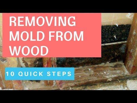 7ee0b57bda84aa5ac28d2454e21e54c0 - How To Get Rid Of Red Mold In Bathroom