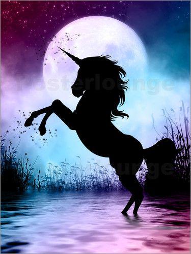 Dolphins Dreamdesign Einhornmagie Einhorn Poster Niedliche Tierzeichnungen Einhorn Kunst