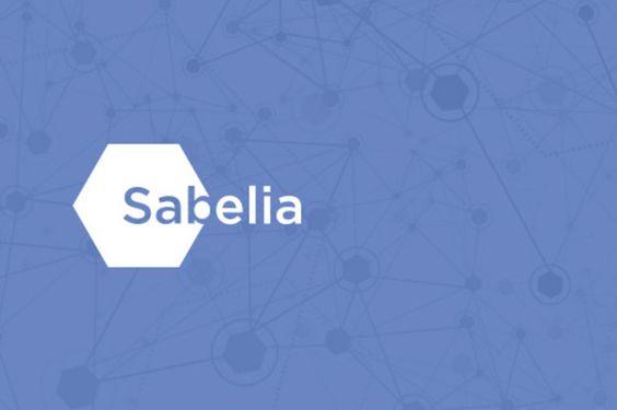 AdiccionWeb: Sabelia: 48.000 panelistas online para realizar estudios de mercado