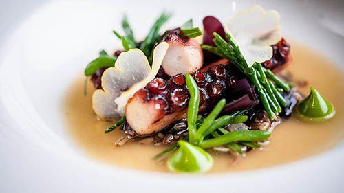 Food Photographer - Cornwall Devon Somerset London