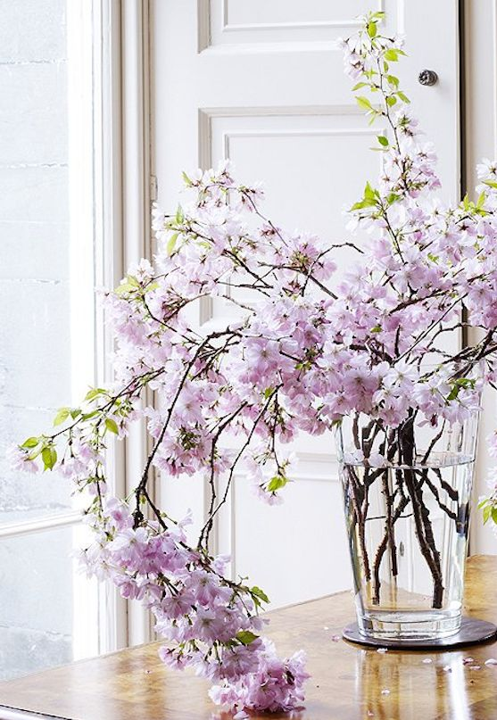 Sweeping cherry blossom branches make for a dramatic arrangement all on their own—no filler flowers needed here!:
