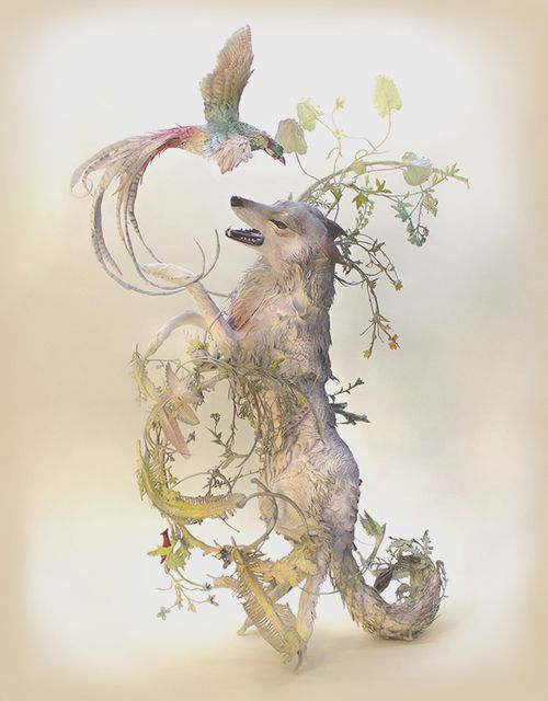 A Feral Antiquity I Wolf With Lady Amherst Pheasant By Ellen - Surreal animal plant sculptures ellen jewett
