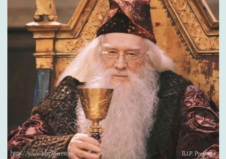 richard harris | Richard Harris dans Harry Potter