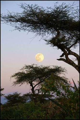 East Shewa, Ethiopia