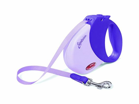 Amazon.com: Flexi Expression 16-Feet Retractable Leash for Dogs, Up to 77-Pound, Purple: Pet Supplies