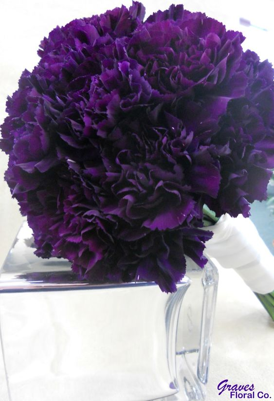 Dark purple carnation bouquet - Carnations are pretty inexpensive and come in tons of colors so you could even throw in some yellow in there if you wanted to!: