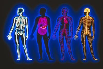 Piriformis Syndrome & Stretching Exercises