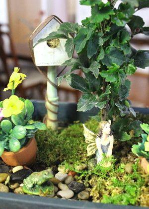 """fairy gardens""...."