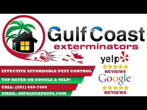 Home Lawn Pest Control How To Keep Snakes Away From The House Diy Pest Control Pest Control Pest Control Mice