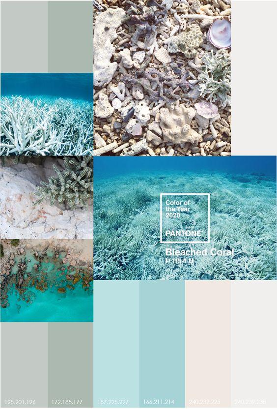 GZ STUDIO {Bleached Coral}   Volgens ontwerpstudio Jack&Huei vergeet Pantone met de kleur vh jaar 2019 de vernietiging v koraalriffen te benadrukken. Het antwoord: kaping vd branding en een voorstel voor de kleur van het jaar in 2020: bleached coral.   •  koraalriffen • bedreigd • oceaan • klimaatverandering • gebleekt • uitgedroogd                • organisch • gruis • algen • kleurloos  Door het stijgen vd watertemperatuur sterven de kleurrijke algen in de koraalweefsels. Tijd voor actie!