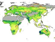 The deserts are greening, and the permafrost is melting ... if we have enough sense, and enough fresh water, this warmer Earth might be a great place ... | World map using satellite data showing the per cent amount that foliage cover has changed around the world from 1982 to 2010.