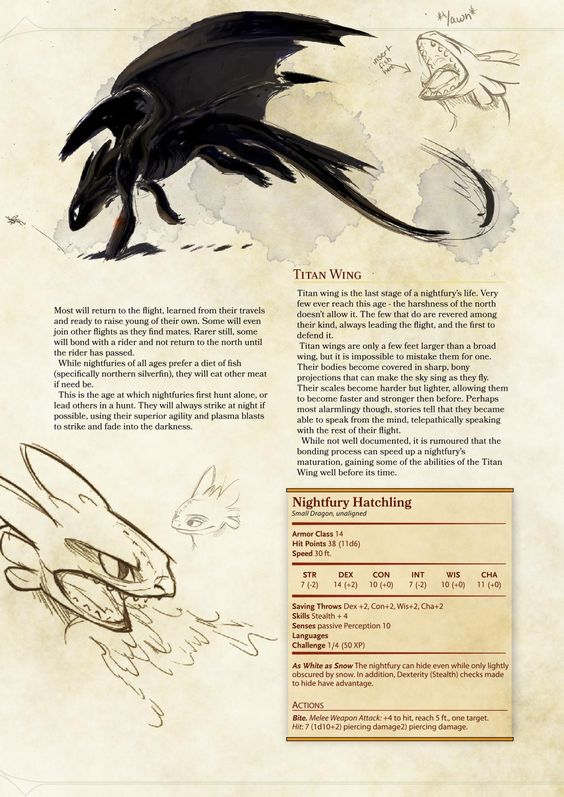 DnD 5e Homebrew (Search results for: dragon)