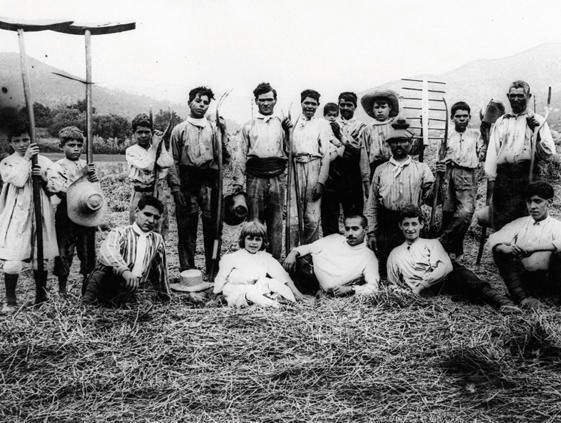 Del Fons Local Tractat d'Agricultura. Manuscrit anònim de Porrera del segle divuit.
