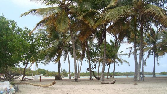 Estado Falcón… En Morrocoy, Cayo Boca Seca      -                             10636694_857763667569421_5943510221926768318_o.jpg (1920×1080)