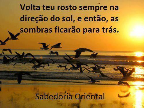 Rafaela Oliveira Rafaelabiologa On Pinterest