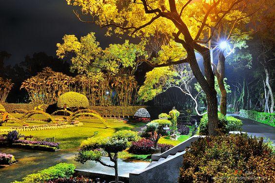 士林官邸.菊花展 | Flickr - Photo Sharing!