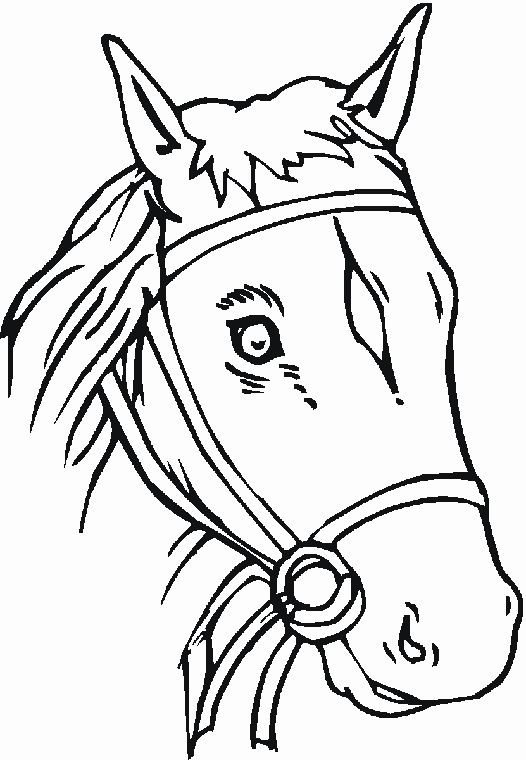 Horse Head Coloring Page Fresh Free Coloring Pages Horses Coloring Pages Horse Head Free Coloring Pages
