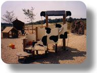 Natural Playground, Play Garden and Playground Design Experience  Good for cow country!