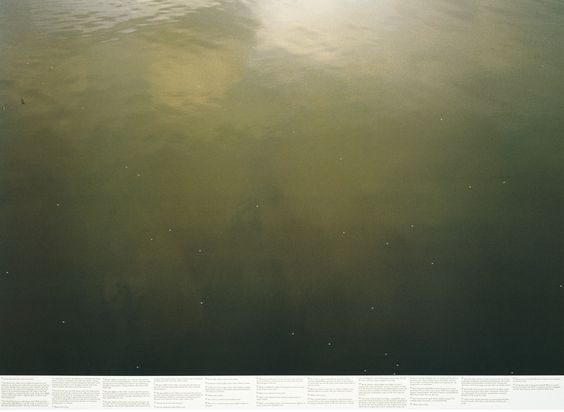 Roni Horn's Still Water (The River Thames, for Example) (1999)