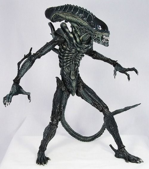 Hot Toys' Alien Warrior | Stuff I Want | Pinterest | Toys ...