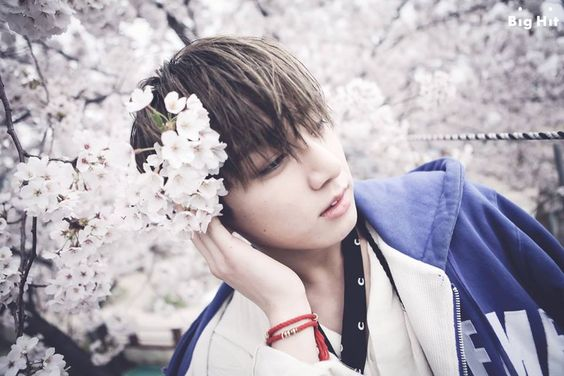 [We are 'Boys over cherry blossoms'!] BTS of course will not just pass away the beautifully bloomed cherry blossoms! They left a 'planned shot' that impressed us.