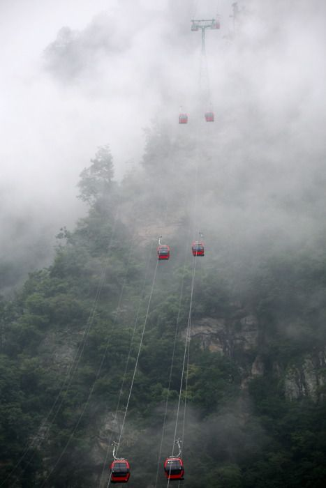 Really scary..........: Brume Fog, Cable Cars, Favorite Places Spaces, Fly, Adventure Travelling, Fog Lift, Beautiful Places, Top