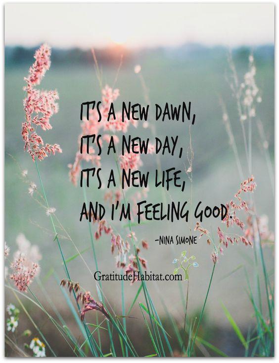 It's a new day.  Choose happiness. Visit us at: www.GratitudeHabitat.com