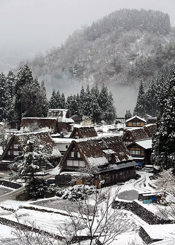 I love Japan. Such a beautiful, scenic, cultured country. Late snow falling /  Toyama, Japan