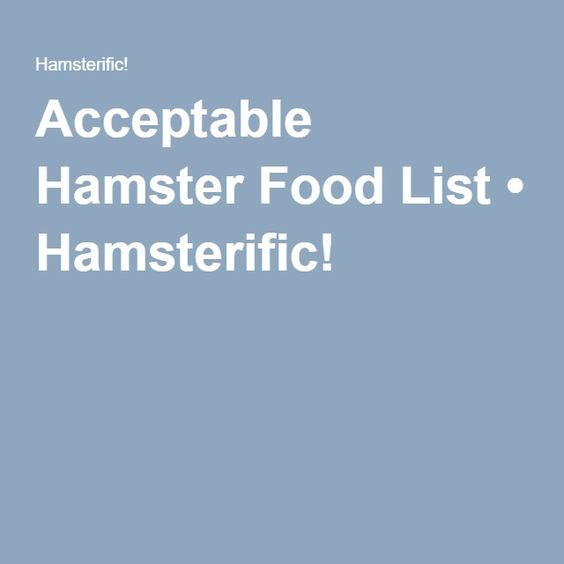Acceptable Hamster Food List • Hamsterific!