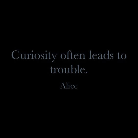 Curiosity often leads to trouble.