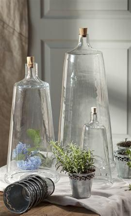 glass cloches: