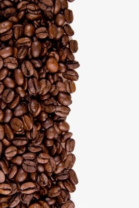 Coffee Beans Isolated With Copyspace For Text Coffee Beans Background Png Transparent Clipart Image And Psd File For Free Download In 2021 Coffee Beans Gourmet Coffee Beans Coffee Bean Logo