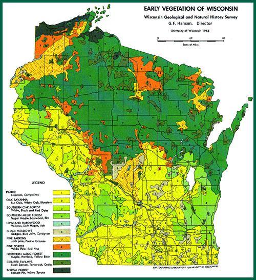 Early Vegetation Of Wisconsin | VEGETATION MAPS Serve As References For  Native Plantings. | WI Native Plants U0026 Identification | Pinterest |  Planting, ...