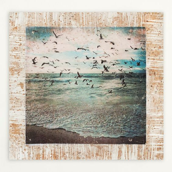 Art prints cKc Project Seagull photography by cKcProject on Etsy