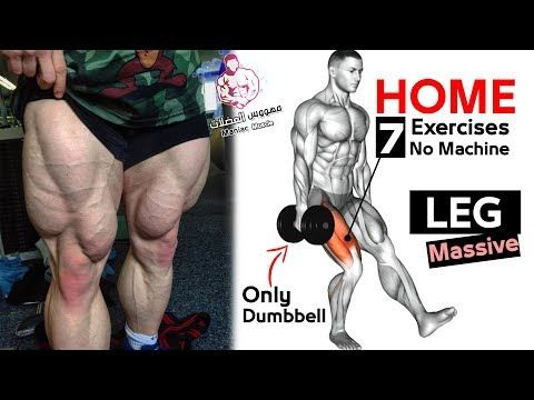 افضل تمارين تضخيم الارجل للمبتدئين كمال الاجسام بدون معدات Leg Workout Youtube In 2020 Leg Workout At Home Leg Workouts Gym Dumbbell Leg Workout