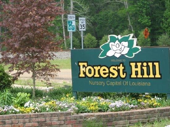 Forest Hill, Louisiana – Home of the Louisiana Nursery Festival! - News - Bubblews:
