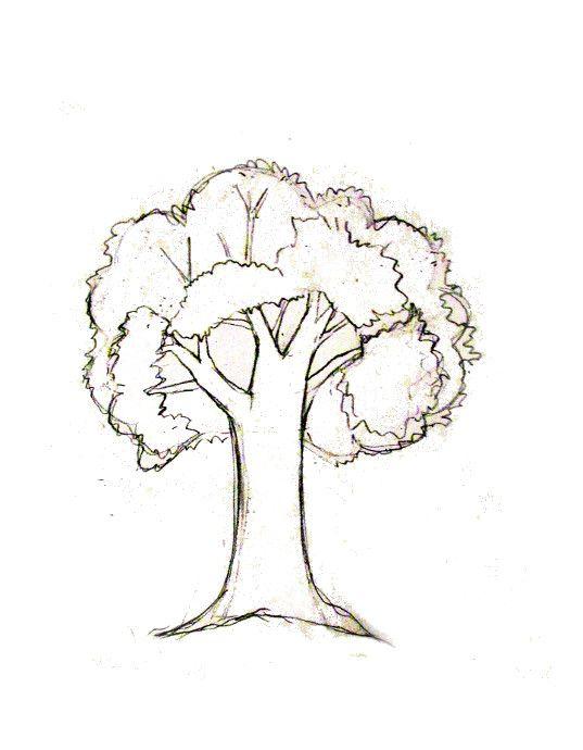 How To Draw A Tree Happy Family Art