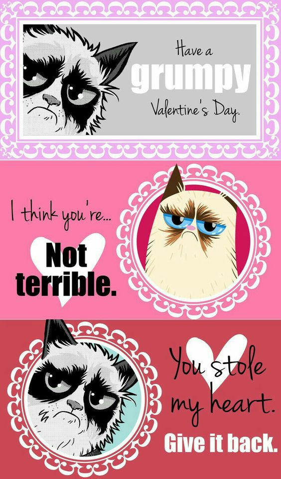 18 grumpy cat valentines for your crabby companion grumpy cat valentines cat valentine and grumpy cat - Grumpy Cat Valentine