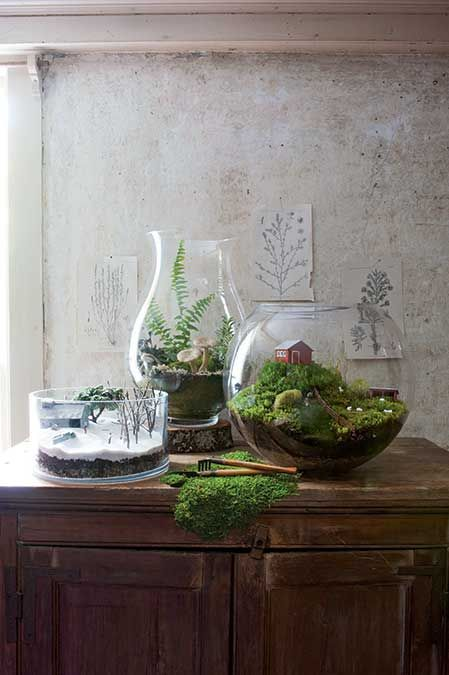 Terrarium Scenes | New England Under Glass...beach, winter, fall foliage, etc: