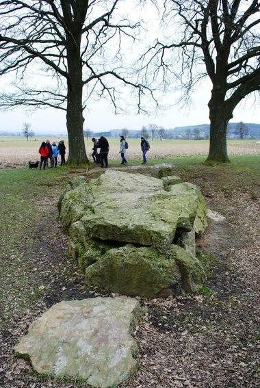 Dagboek herborist: wandelen in Weris - Plazilla.com