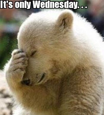 50 Kickass Funny Wednesday Memes To Make Hump Day Better In 2020 Funny Wednesday Memes Wednesday Humor Yearbook Memes